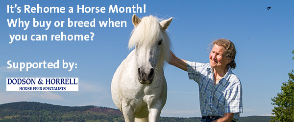 It's Rehoming Month
