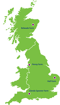 horse rehoming map